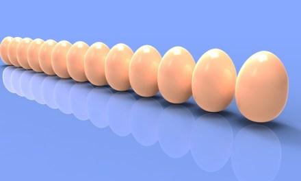 살충제 계란 우리 몸에 괜찮을까?