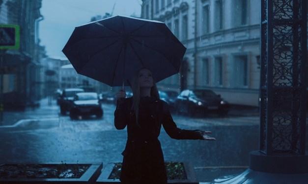 가방만 명품인가? 우산도 명품이다!