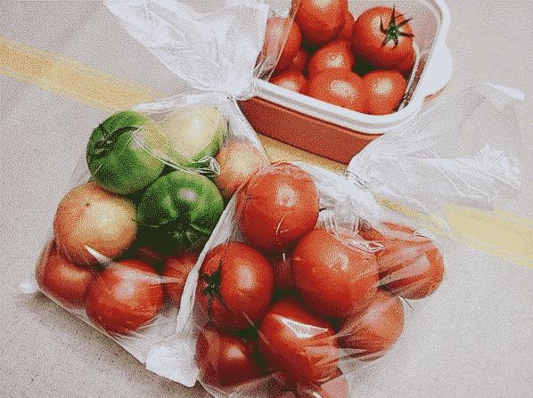 포도 봉투로 채소, 과일들을 더욱 싱싱하게 보관해 보세요