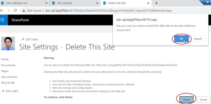 delete this site in site settings