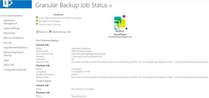 Granular Backup Job Status