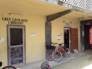 Belize library