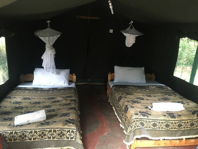 Inside the tent cabins (bathroom is behind a tent flap behind the beds)