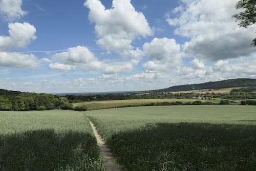 There are great views on the Wendover to Coombe Hill walk