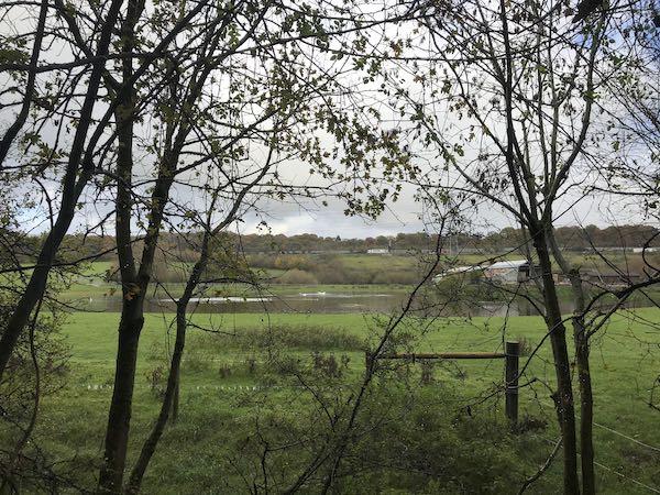 The start of the Fulmer to Burnham Beeches walk runs alongside the M40