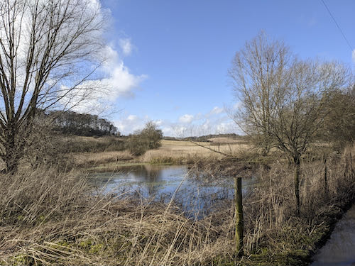 The mud free Chiltern walk on a sunny day