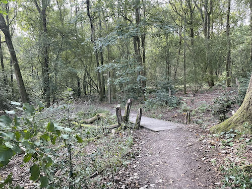Into the woods again on the Pinner to Stanmore country walk
