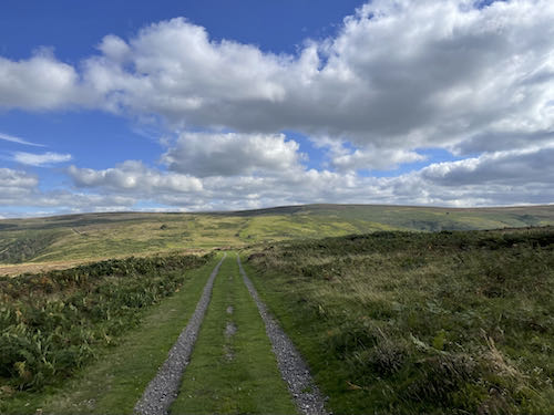 Back on the moorland on the Church Stretton & Long Mynd walk