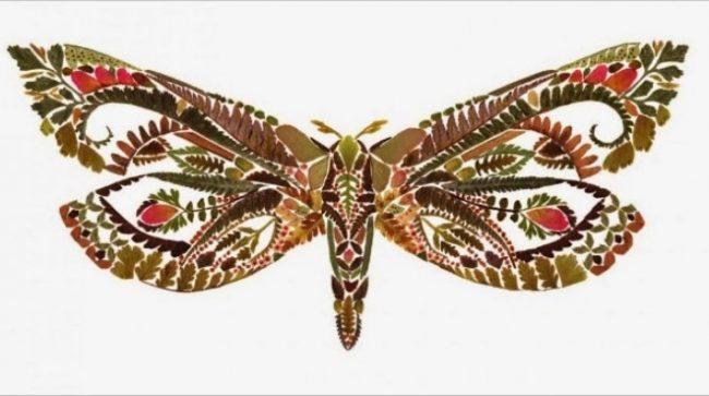 Gambar Kolase Kupu-kupu dari Kertas