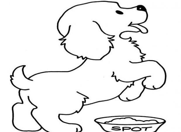 Sketsa Gambar Anjing