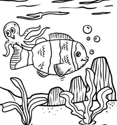 Sketsa Gambar Ikan Badut