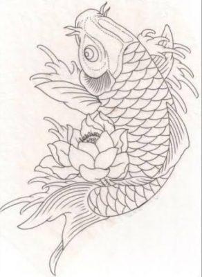 Sketsa Gambar Ikan Koi