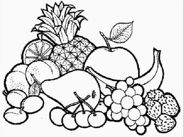 Sketsa gambar buah