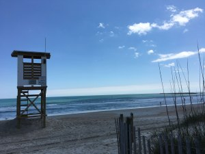 Shark Bar coming to Wrightsville Beach