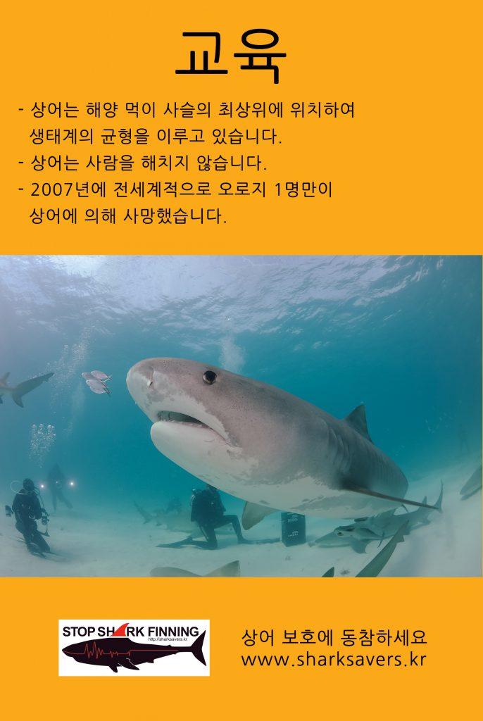 상어 보호 - 교육
