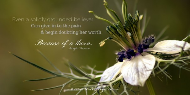 Even the solidly grounded believer can give in to the pain and begin doubting her worth because of a thorn. Angela Thomas