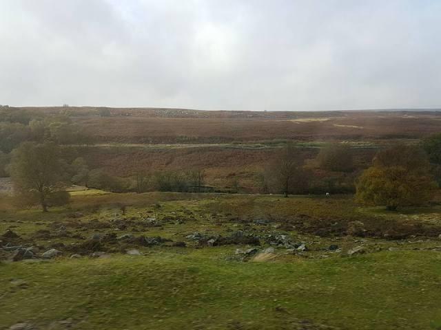 B1 Yorkshire Moors just outside Goathland