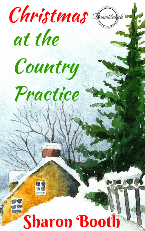 Christmas at the Country Practice
