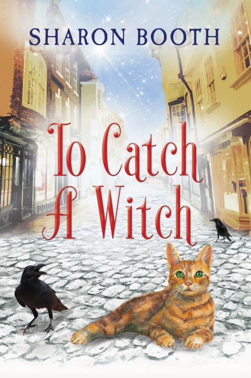 cover for To Catch a Witch, Witches of Castle Clair Book 3 by Sharon Booth.