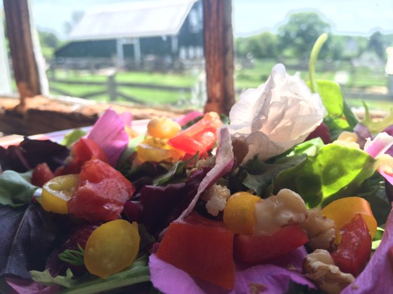 Rose of Sharon makes colorful, nutritious and yummy salad