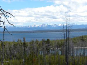Lake Yellowstone with the Glaciers as a backdrop