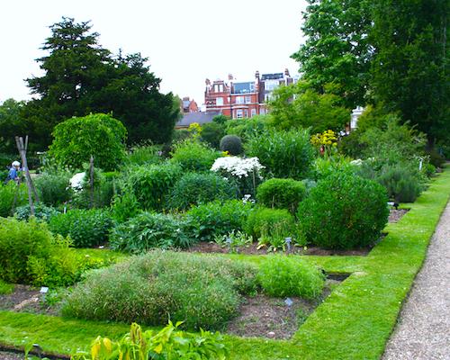 Chelsea_physic_garden