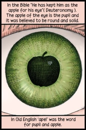 apple eye