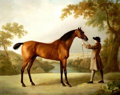 Servants Focused on the Horses