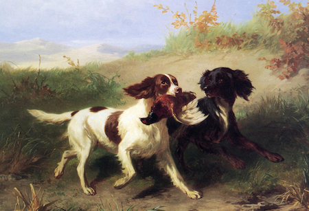 Dogs Essential for a Regency Era Hunter