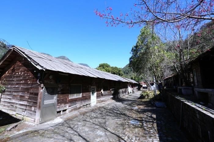 谷關景點 松鶴部落 拍百年檜木板屋、八仙山森林鐵路久良栖站 泰雅族手作產品好好買