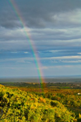 Rainbow over Trinidad