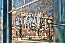 bean stalk reflection 8324sm