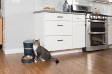 Smart_Feed_LS_Cat_4350
