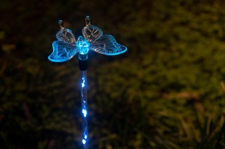 Lights at night-2