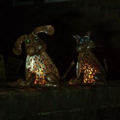 cat and dog lanterns-1