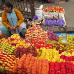 Vivid colors fill the streets of the Bangalore flower markets. The floral business has grown into international and prosperous ventures, for better and for worse. (India)