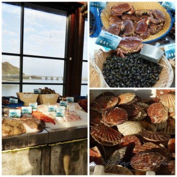 collage of seafood in the market