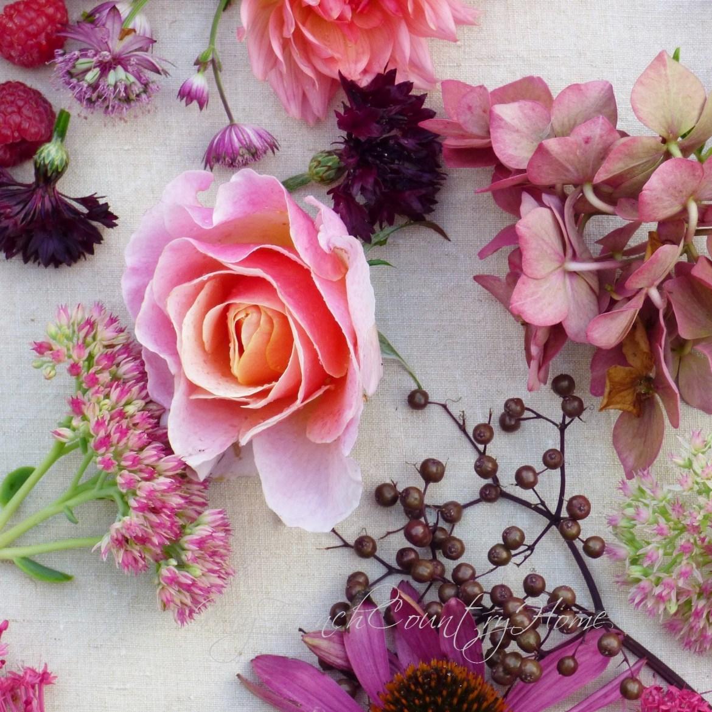 autumn flower heads on table top