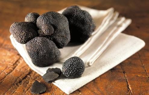 black truffles on white cloth and wood table