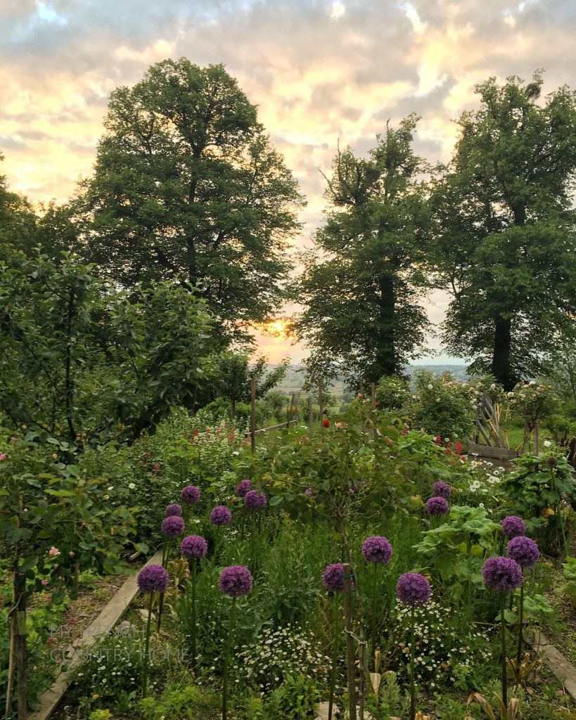 SUNSET OVER GARDEN WITH A VIEW