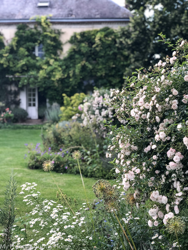 The garden- My Garden Parterres- MY FRENCH COUNTRY HOME
