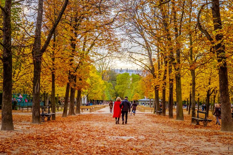 couple walking in golden leaves in the Tuilleries garden