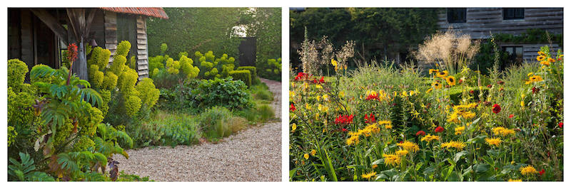 garden and path with red and yellow flowers
