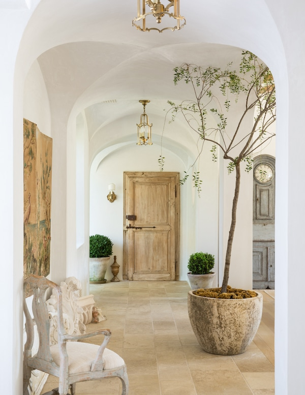 entrance way with wooden door and potted tree