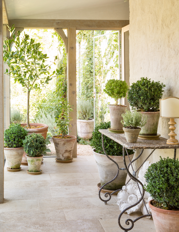 home entrance with potted plants