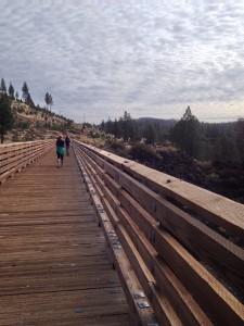 Bizz Johnson - Bridge