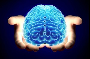 brain_hands_large
