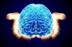 brain_hands_large