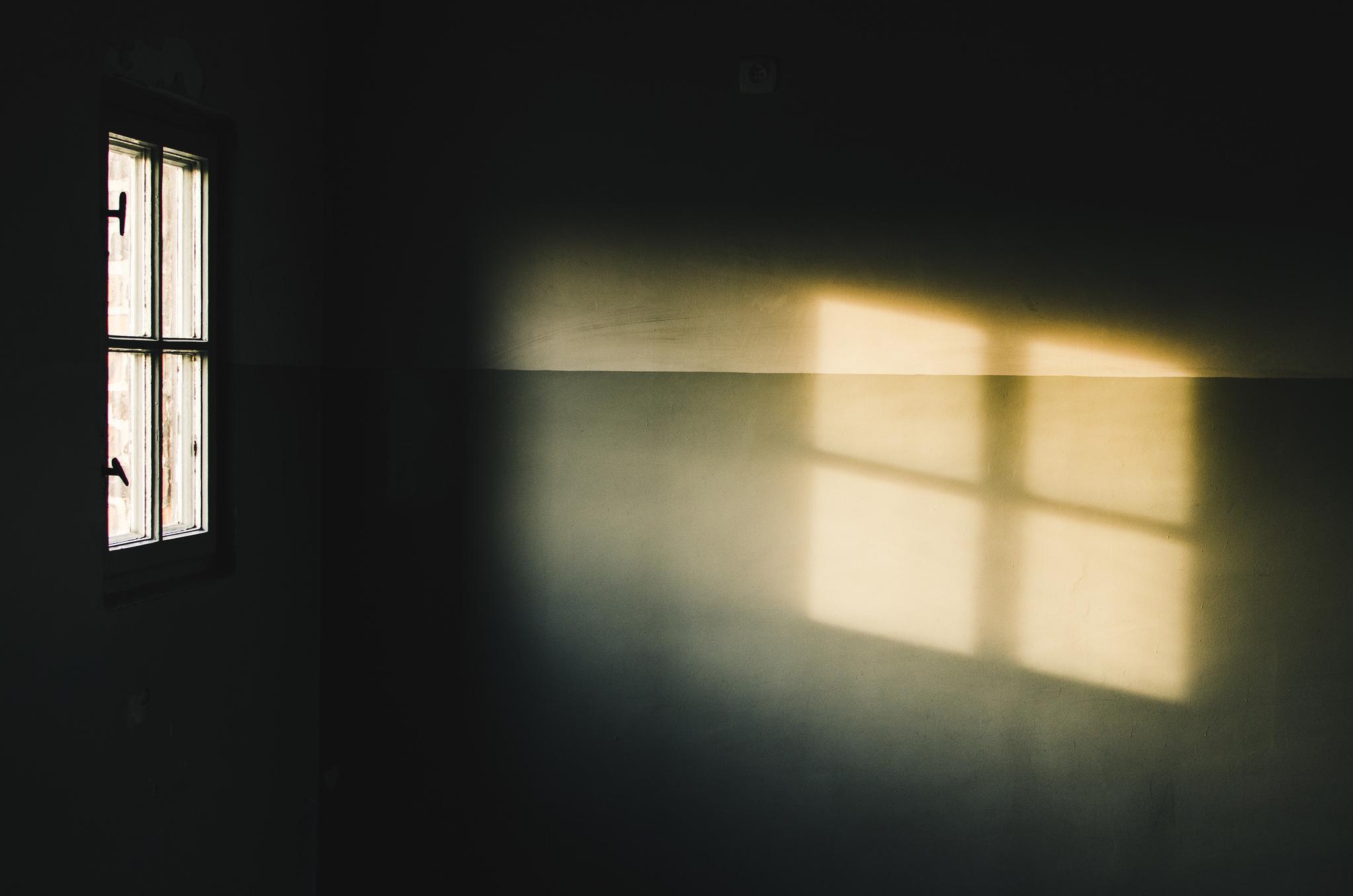 JaviSanchezdelavina-WindowofLight