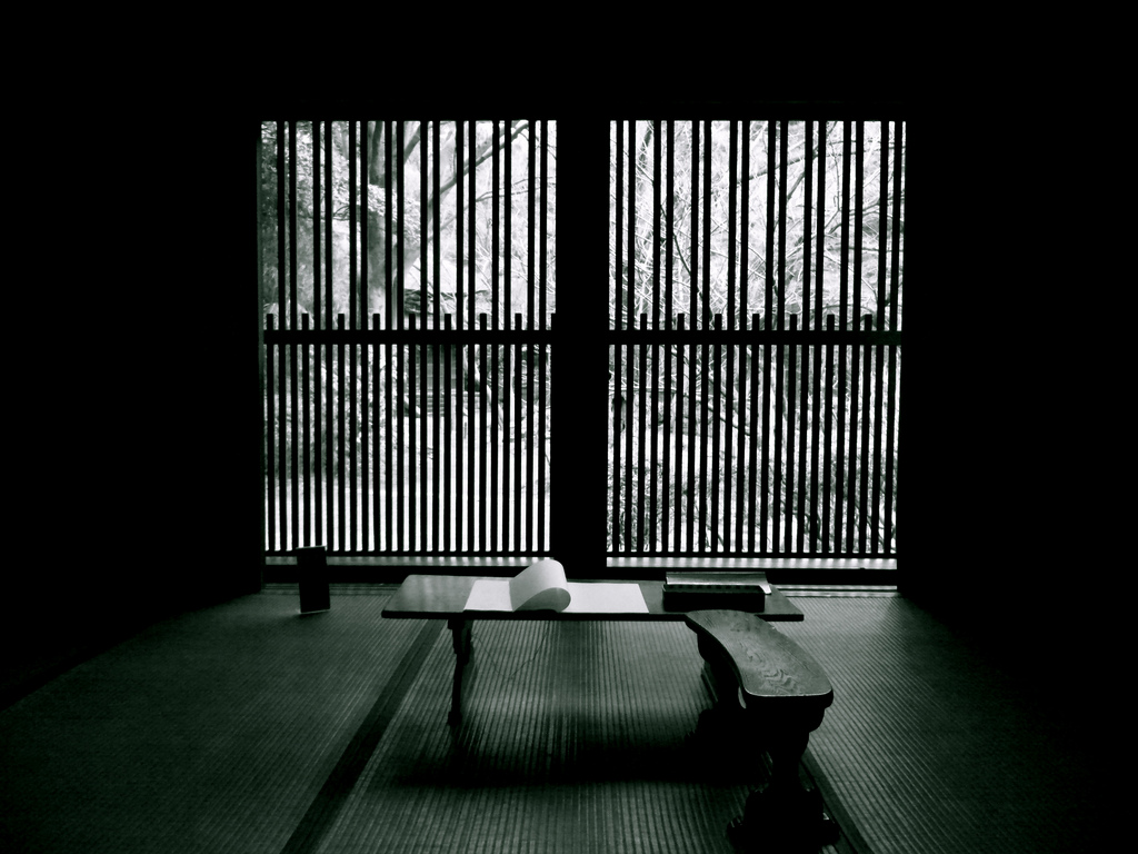 Yuki Yanginuma Study